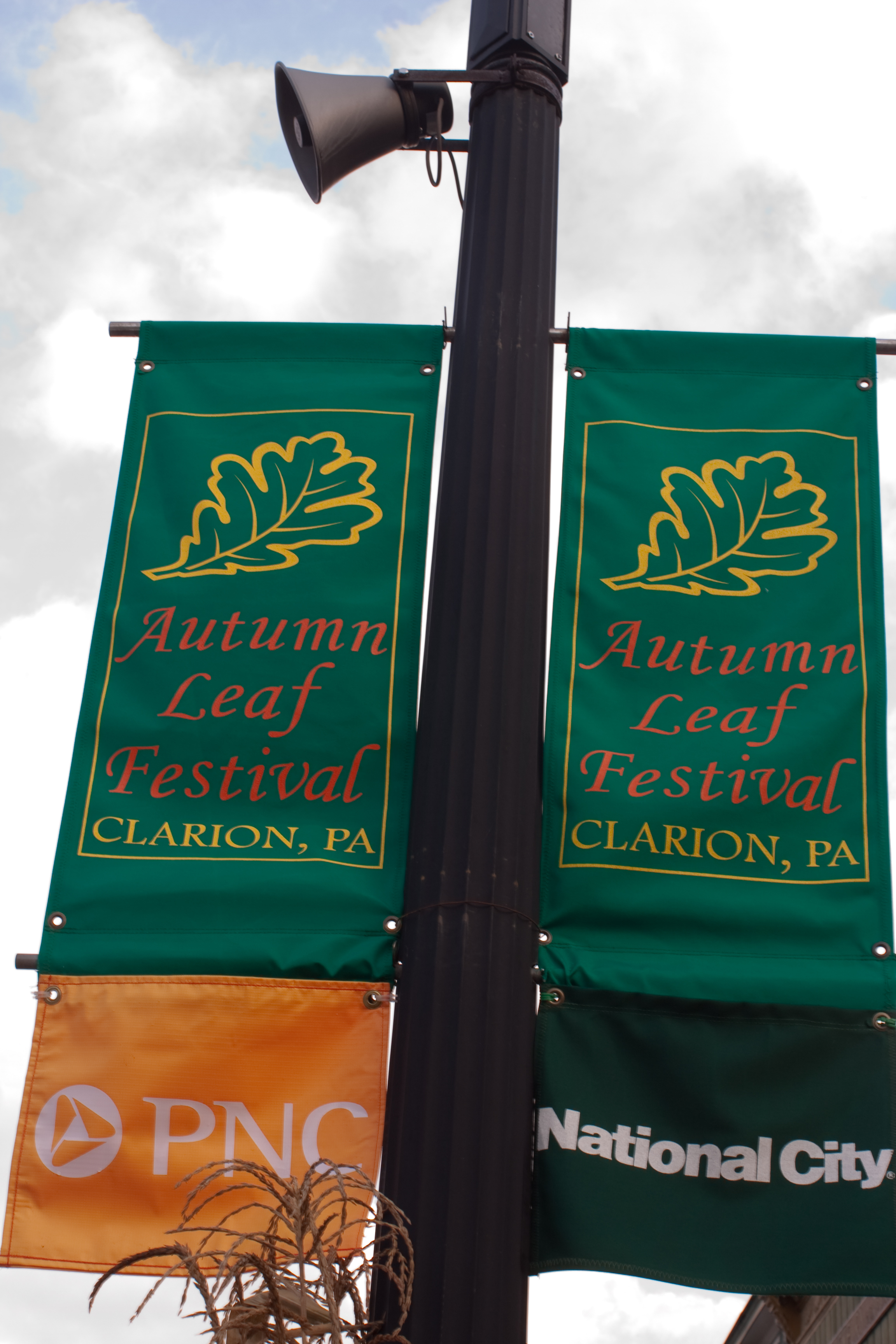 Street banners for the Autumn Leaf Festival