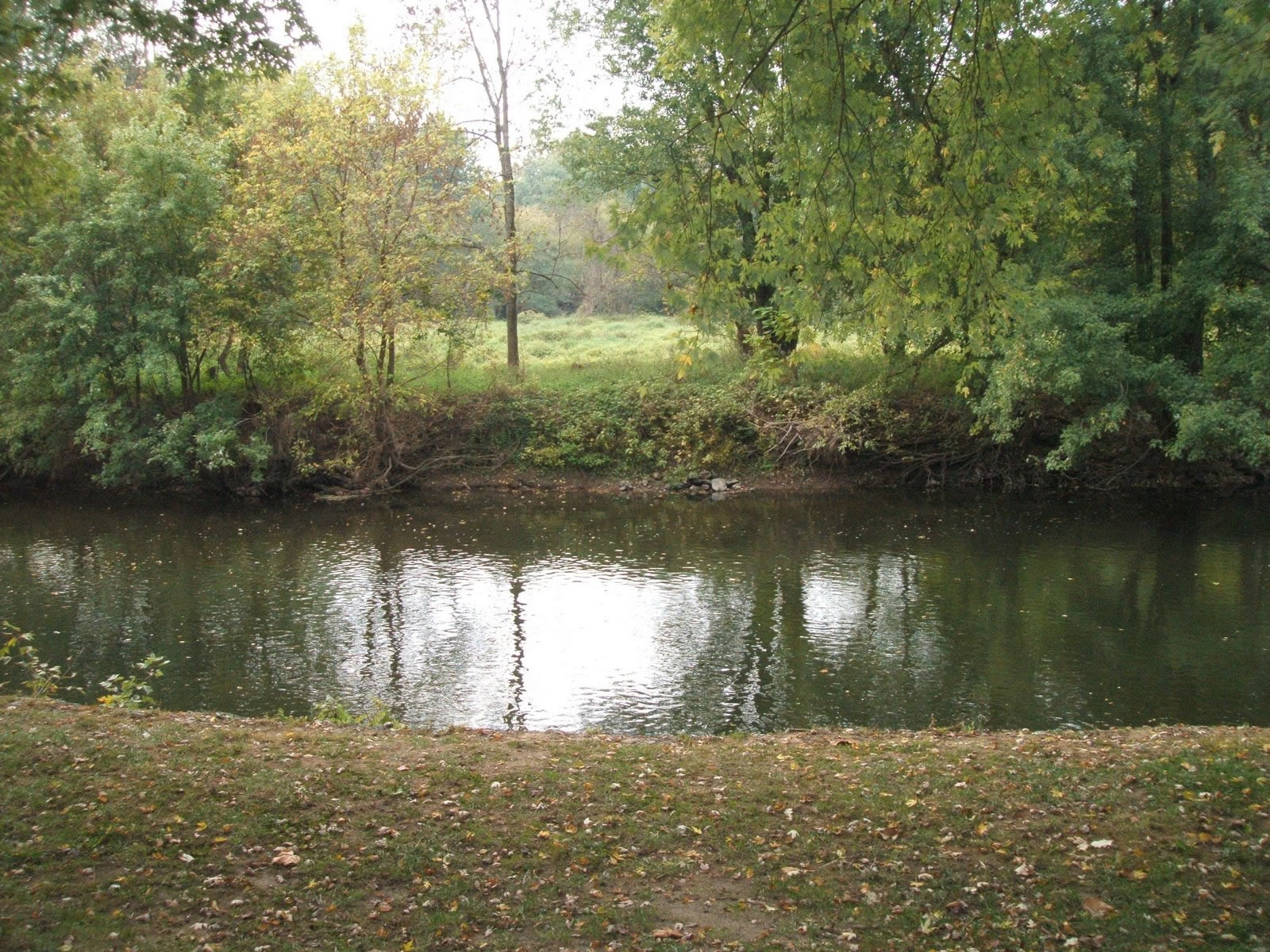 Brandywine River Bank