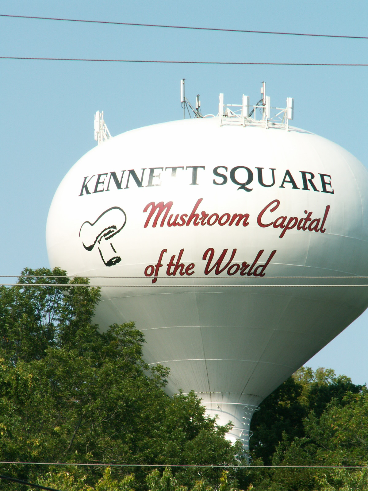 Kennett Square's Water Tower proclaims it the Mushroom Capital of the World
