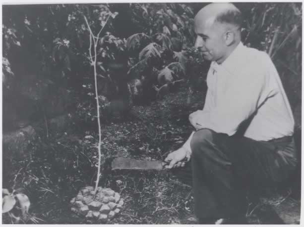 Russell Marker collecting a sample in Mexico
