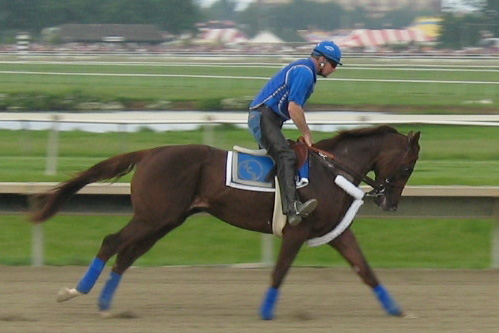 Smarty Jones Works Out