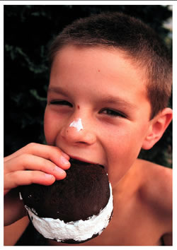 Young Boy eating a Whooopie Pie